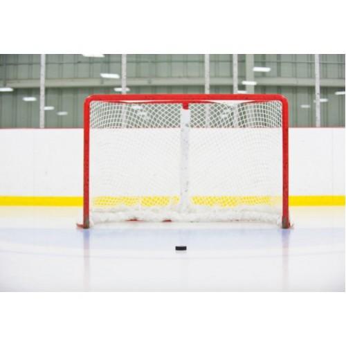 Ворота хоккейные профессиональные РР-1211
