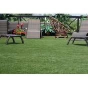 Декоративная трава (7)
